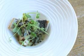 本日の鮮魚のポワレ~海藻Vin blanc、カブ~